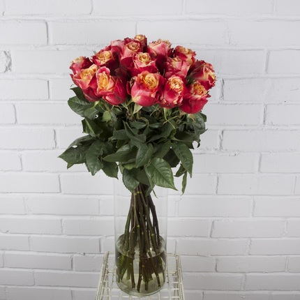 Роза 3Д
