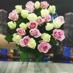 25 роз бело-розовых 60 см (Россия)