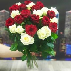 25 роз бело-красных 80 см (Россия)