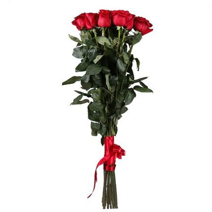 15 роз Freedom 100 см Эквадор