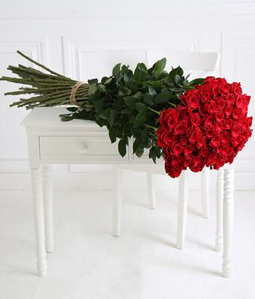 51 красная роза Freedom 150см