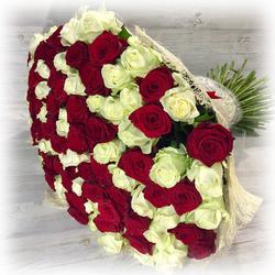 """Букет """"101 красно-белая роза"""" 50 см (Россия)"""