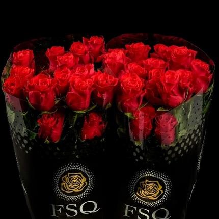 Роза Альтамира