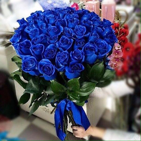 это синие букеты цветов картинки словам хозяина