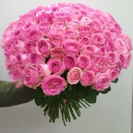 101 розовая роза 50 см (Эквадор)