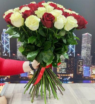 Букет 51 красно-белая роза 40 см (Эквадор)