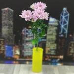 Хризантема кустовая фиолетовая (Балтика)