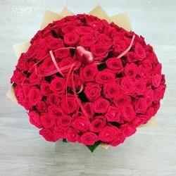 101 красная роза 40 см (Россия)