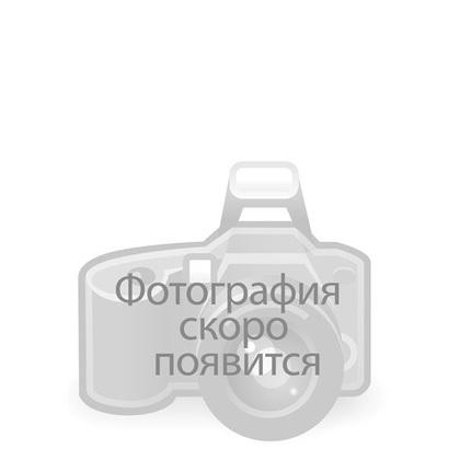 25 желто-розовых роз 80 см (России)